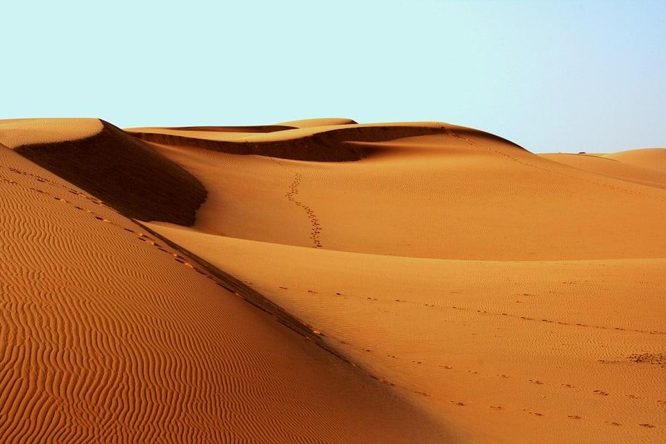 desert-plane-crash-paddy