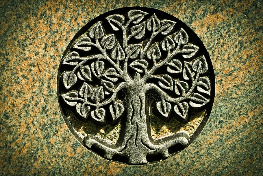Celtic Tree of Life – representing eternal life and love