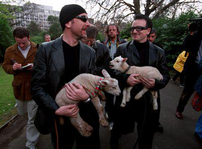 Let your sheep mingle with Bono's - if you are a Freeman or Freewoman.