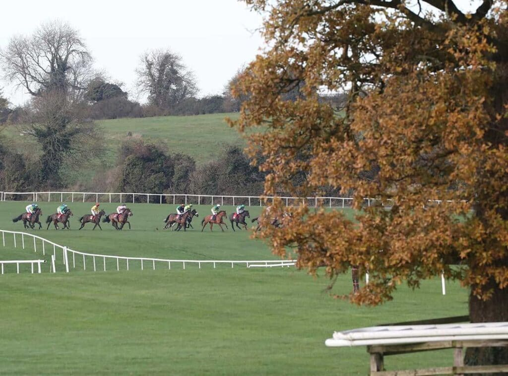 Punchestown Racecourse is one of the best spots to watch horse racing in Ireland.