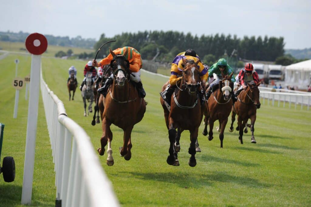 Curragh Racecourse is one of the best spots to watch horse racing in Ireland.